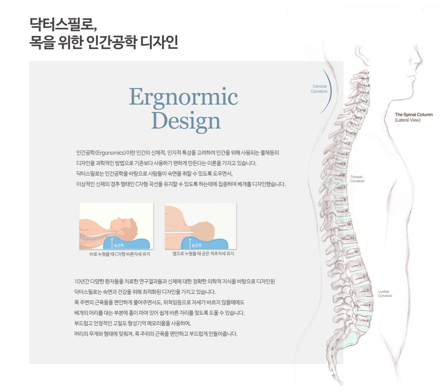 닥터스필로, 목을 위한 인간공학 디자인